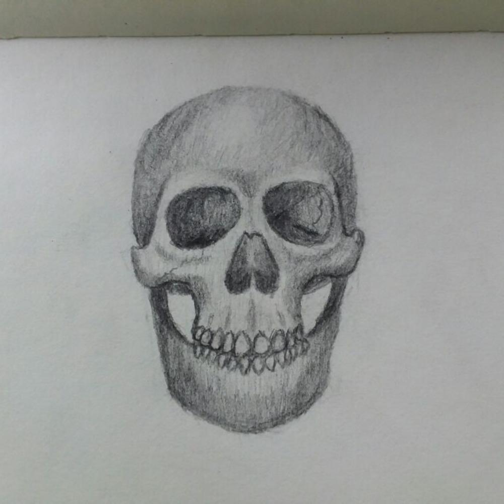 Skull: by Anonymous (Jan 28, 2018)